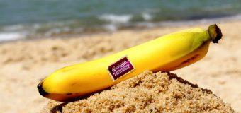 Cuisiner des bananes plantain